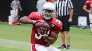 Running Back David Johnson, #2 Ranked Fantasy Football RB